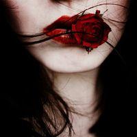 Un fiore morto
