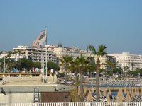 Vorrei essere a Cannes